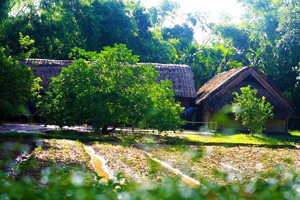 Mái nhà xưa cùa Bác tại làng Sen