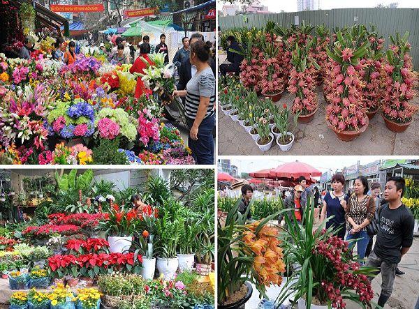 Những chợ hoa nổi tiếng ở Hà Nội